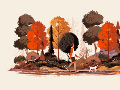 Fall Foliage person boy texture rock pine tree leaves outside walk dog fall colors fall plants landscape flower outdoors tree nature