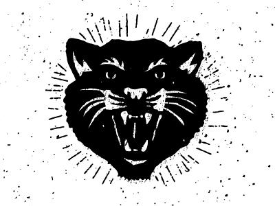 Bss black cat wip