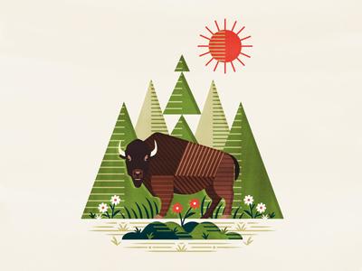 Bison  lines geometric species horns flowers sun trees nature scene american animal buffalo