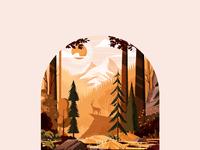 Forest landscape study 2