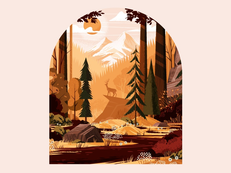 Forest Landscape Study grass flower scenic plants rock trail mountain deer park outdoors tree nature
