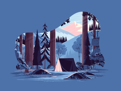 Landscape Study camp light woods forest outside camping winter lighting depth plants rock tent mountain outdoors tree landscape nature