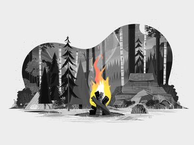 Adobe Creative Cloud - Splash camping outside forest woods greyscale night flame fire depth plants rock mountain outdoors tree landscape nature