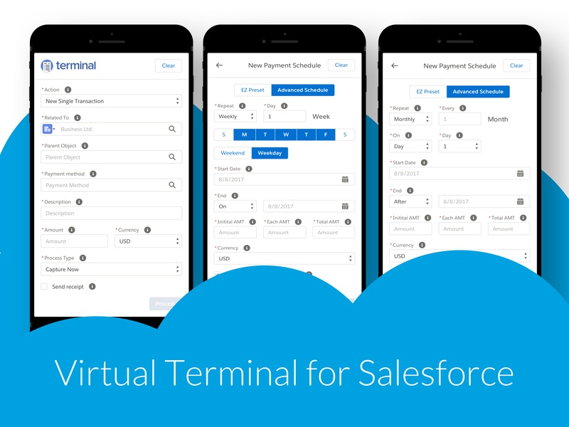 Virtual Terminal for Salesforce by Ákos Bozor on Dribbble