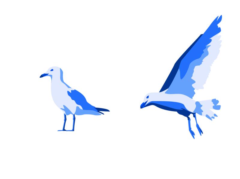 Gulls monochrome illustrator illustration graphic design graphic design branding animal birds