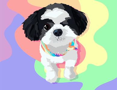 Pride Pup #2 shih tzu friend rainbow pride dog puppy face logo summer colorful illustrator illustration graphic design graphic design branding