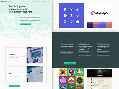 New Envy Site case study website builder website design website florida orlando envy labs