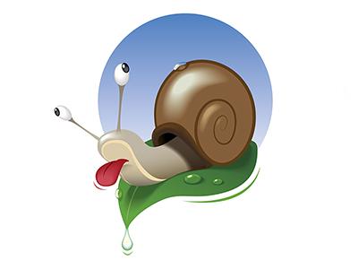 Snail for dribbble
