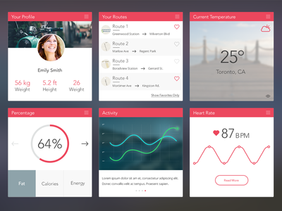 Dashboard dashboard widget graph data weather profile health