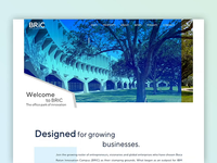 BRIC Website
