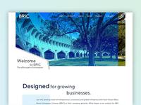 BRIC Website