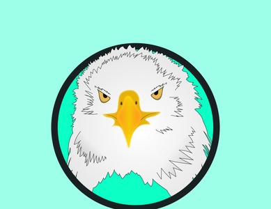 Eagle Logo eagle logo digital logo logo design design logo unique logo minimalist logo