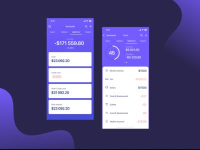 Budget app clean interface ux design ui