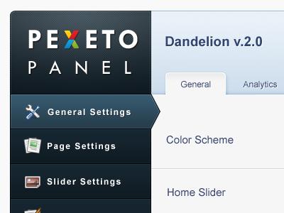 Wordpress Theme Options Panel