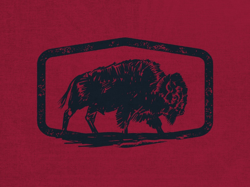 Buffalo outdoors illustration buffalo