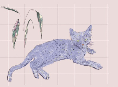 Cilantro tropical dibujodigital ilustración illustration art illustration ilustraciondigital colores cat illustration portrait illustration portrait cat digital illustration