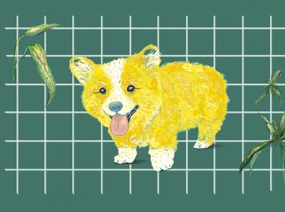 Baby portfolio mascota portrait portrait illustration cute illustration cute animal corgis dog illustration pet mascot design mascot character ilustración dibujodigital tropical colores illustration illustration art ilustraciondigital digital illustration