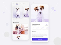 Pet Adoption App cat dog animal user experience user interface onboarding animal app pet care animal app ui cat app dog app pet adoption pet app