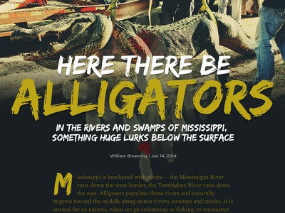 Here There Be Alligators editorial design vox media longform alligators article layout typography sb nation responsive