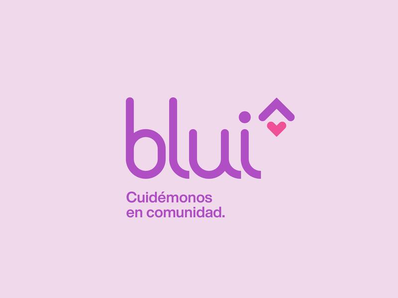 Blui Homecare vector type typography minimal icon flat logo brand branding
