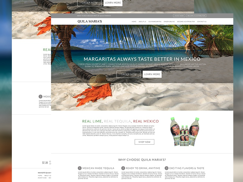 Tequila Sales Website responsive wordpress square e-commerce margarita tequila