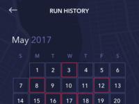 Run history