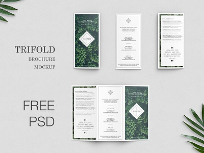 Free Trifold Brochure Mockup presentation trifold brochure free flyer trifold design trifold brochure design brochure mockup trifold mockup mockup freebbble freebie