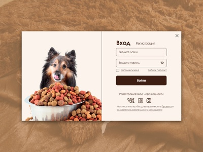 login form dog animation login form форма ux ui design