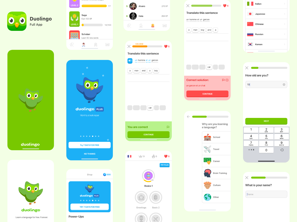 Duolingo - Full App - 37 Screens full app duolingo full app duolingo app learning app screen splash duolingo