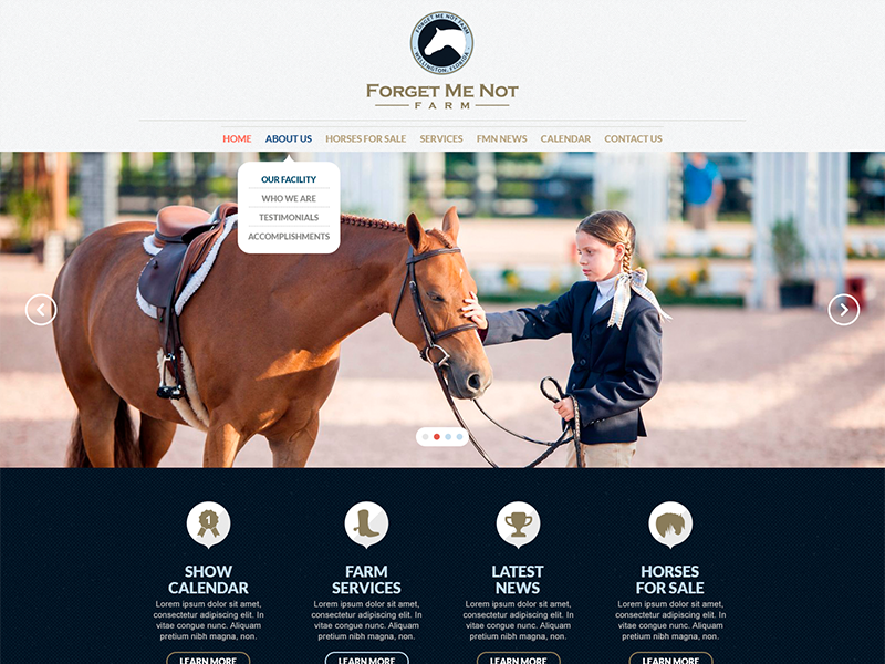Forget Me Not Farms flat design design interface web site layout minimal