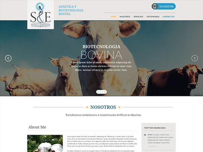S&E - Genetica Bovina minimal layout site web interface design flat design