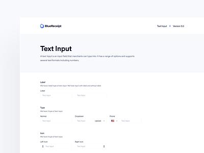 BlueReceipt's Design System: Pangea ✶ Text Input bluereceipt hand-off pattern text input states text input spacing text input structure text input guideline ui saas design system input text field text input
