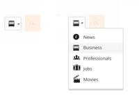 EnteCity.com / search options