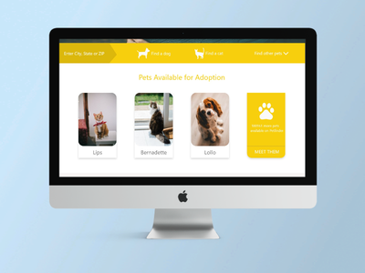 Full design page cat dog animal illustration ui adobe uxui ux branding userinterface userexperience design adobexd