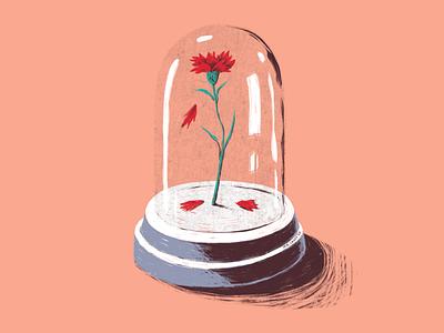 E depois do Adeus revolution portuguese 25abril fragile glass red gillyflower carnation flower drawing mrcoofs illustration