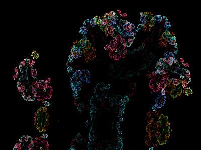 🦠 dark digital colorful bacteria virus illustration apophysis abstract 3d 2d