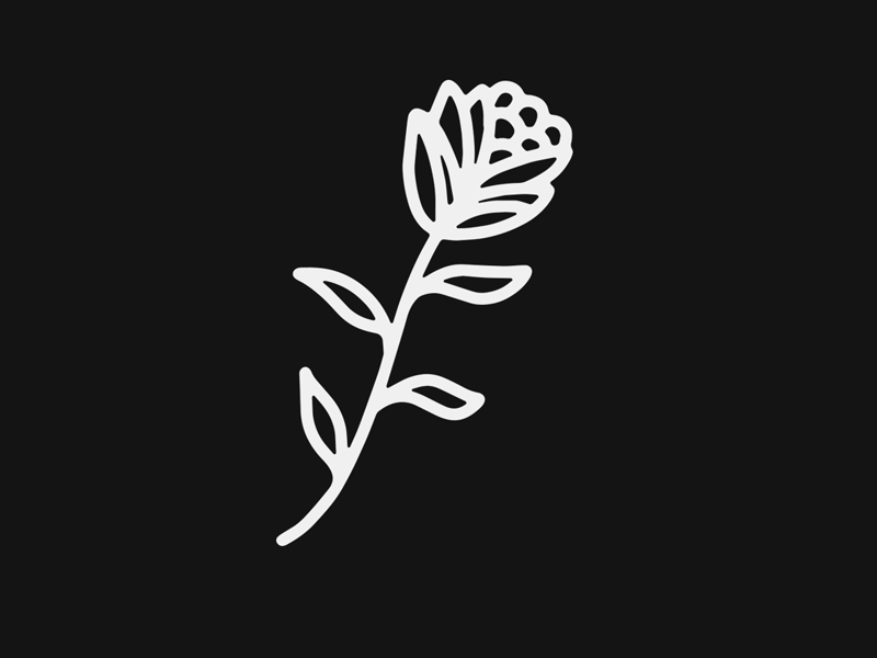 Its Only A Flower black blackwork traditional tattoo texture vintage script hand lettering lettering tattoo illustration