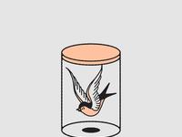 Sparrow in a jar 3