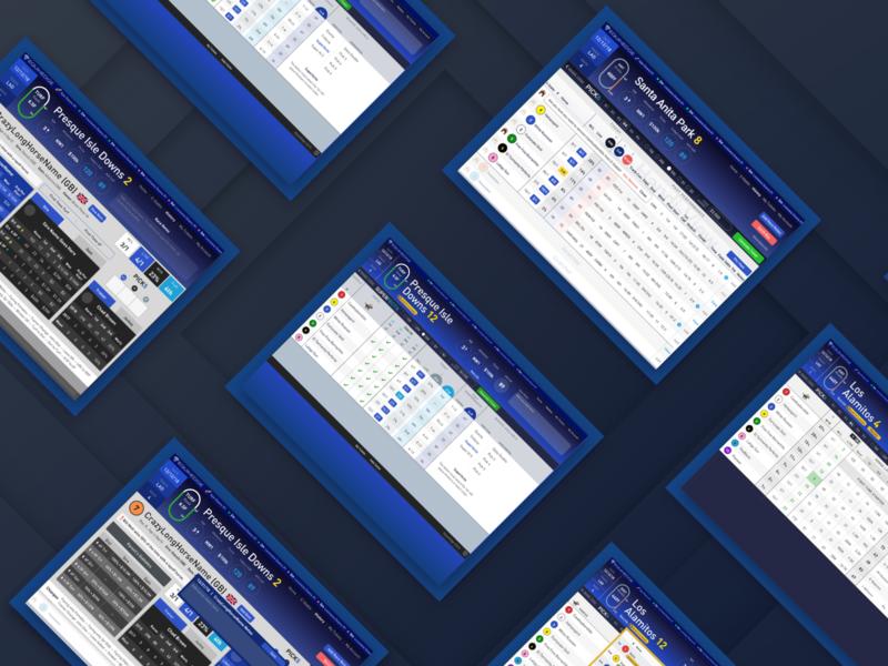 Horse Racing - Betting Dashboard horses trading dashboard analytics dashboard analytics