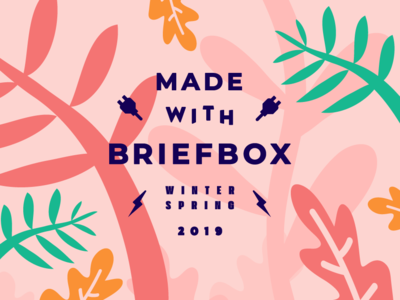 Made With Briefbox Winter-Spring 19 briefbox fun illustration website brand lettering