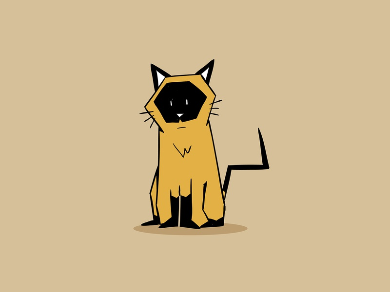 siamese geometric cute kitten kitty cat siamese