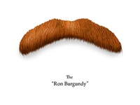 The Hairy Face of Hollywood - Ron Burgundy