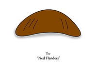 The Hairy Face of Hollywood - Ned Flanders