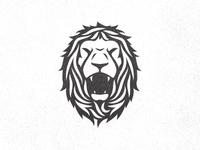 Lion (work in progress)