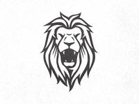 Lion Head (work in progress)