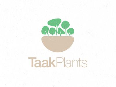 TAAK Plants Logo Design   2021 leaf logo khaki flower logo flower pot green botanical logo botanical plants logo plant illustration logolounge brand logolearn logolove logomaker logoinspiration logo design logodesign logo branding