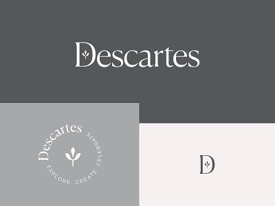 Descartes letter symbol minimalism identity logotype monogram minimalistic logomark branding brand logo