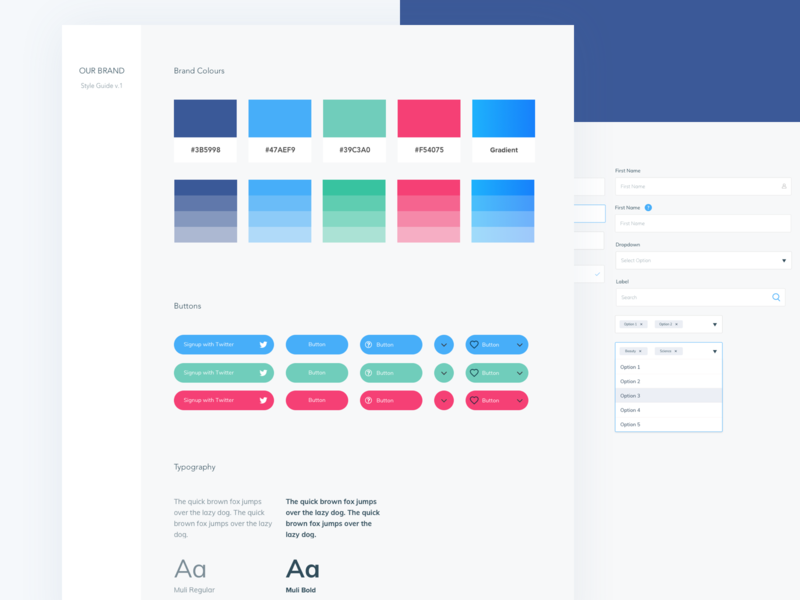 Ui Style Guide design system library web website ui style interface style guide guide buttons