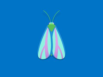 Neon painted lichen moth