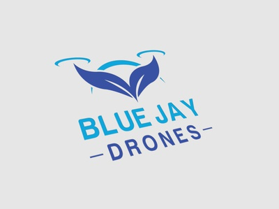 Blue Jay Drones modern flat minimal illustration icon logos illustrator design vector logo design